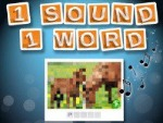 1 Ses 1 Kelime