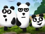 3-pandasW838.jpg