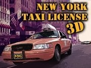 New-York-Taxi-License-3D.png