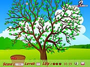 apple-tree4.jpg