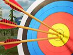 Archery Master 3D Online