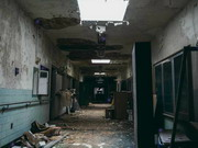 asylum-z62.jpg