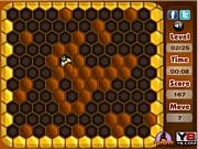 Bee Hunt