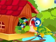 bird-house37.jpg