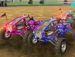 buggy-riderDcfs.jpg