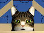 Cat Box Bowling