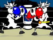 Lutador de vaca