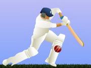 cricket82.jpg