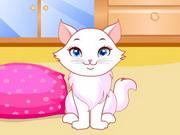 cute-kitten-daycare99.jpg