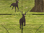 Cerfs Sniper 2014