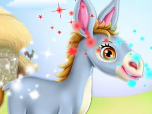 Szamár ló gondozása
