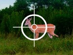 Geyik yavrusu Hunter 3000