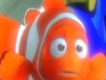 Alla ricerca di Nemo Spot the Difference