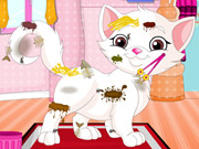 messy-kitten-caring44.jpg