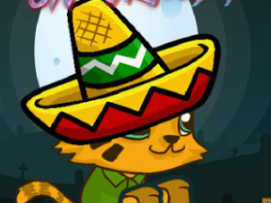 Cat Mexique 2