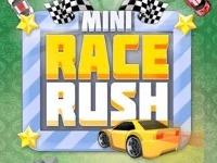 Carrera de la mini carrera