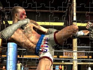 MMA lucha contra rompecabezas