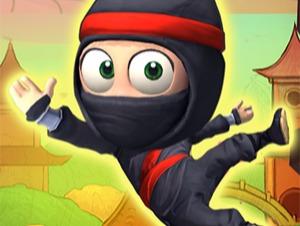 Ninja Aufstieg