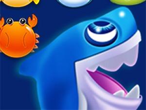 shark-dash-300.jpg