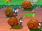 snail-race7.jpg