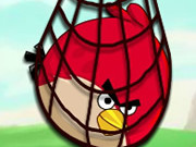 surround-angry-bird1.jpg